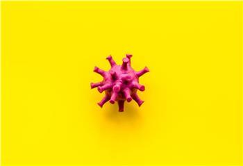 Coronavirus: 131 Neuinfektionen durch PCR-Test und 51 positive Antigentests